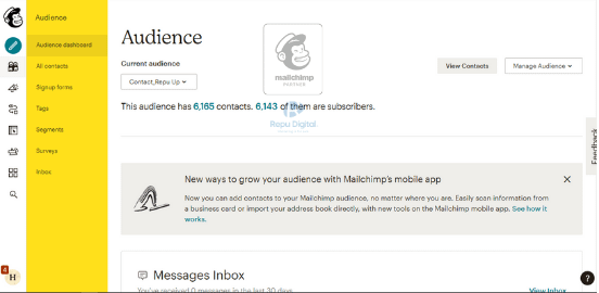 audience-mailchimp