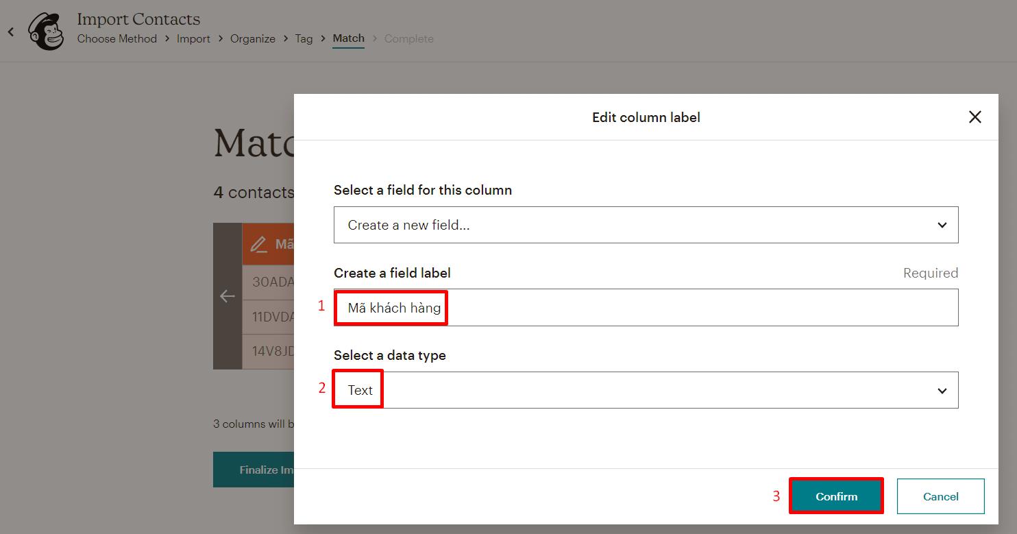import-contacts-Mailchimp
